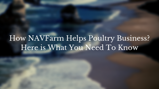 How NAVFarm Helps Poultry Business